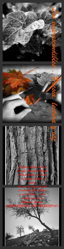 collage-para-presentacion-de-poesia